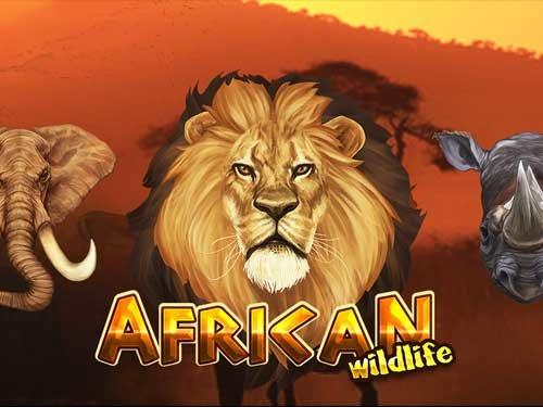 รีวิว เกมสล็อต African Wildlife